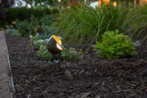 FX Luminaire WS Wash Light