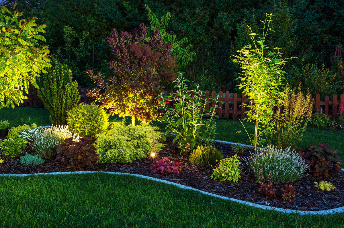 Seven Landscaping Design Ideas