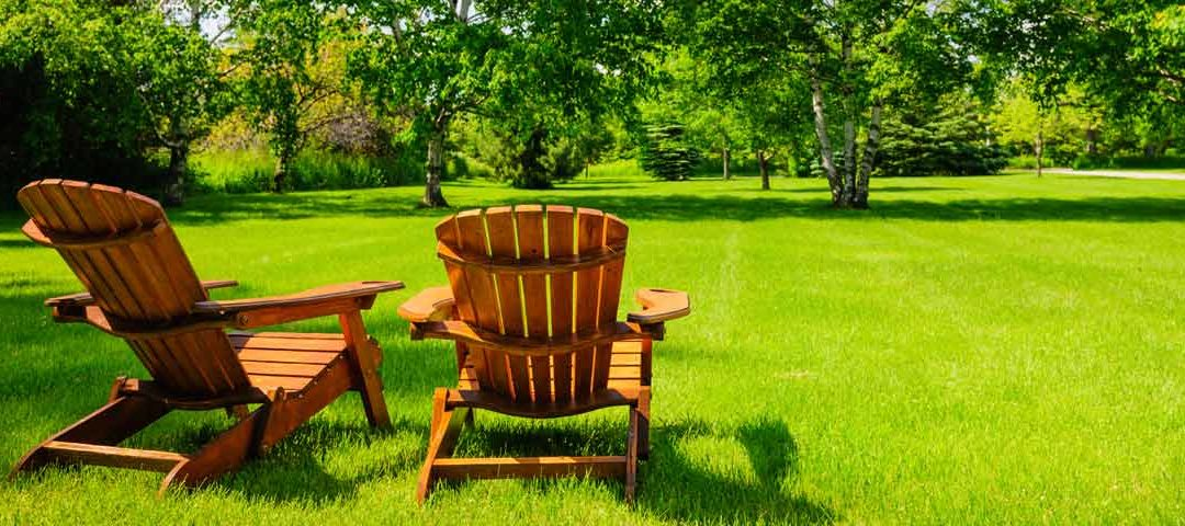 Essential Beginner Lawn Care Tips