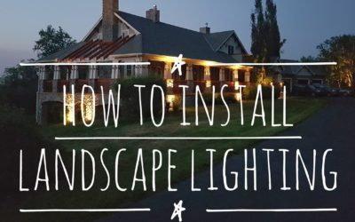 How to Install Low Voltage Outdoor Landscape Lighting Design Techniques